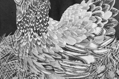 Hertta, 70 x 100 cm, ink on paper, 2020